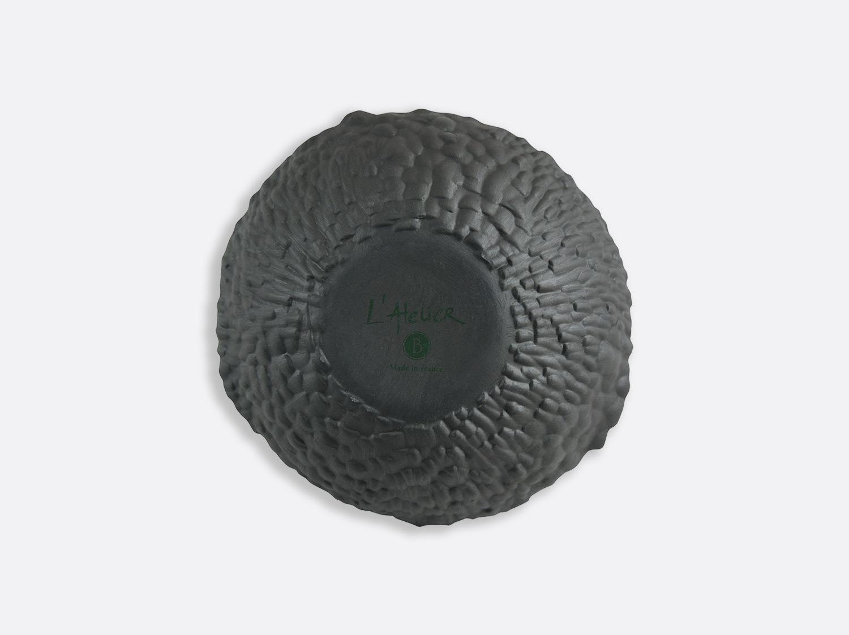 Ecorce bolnoir16 5cmv