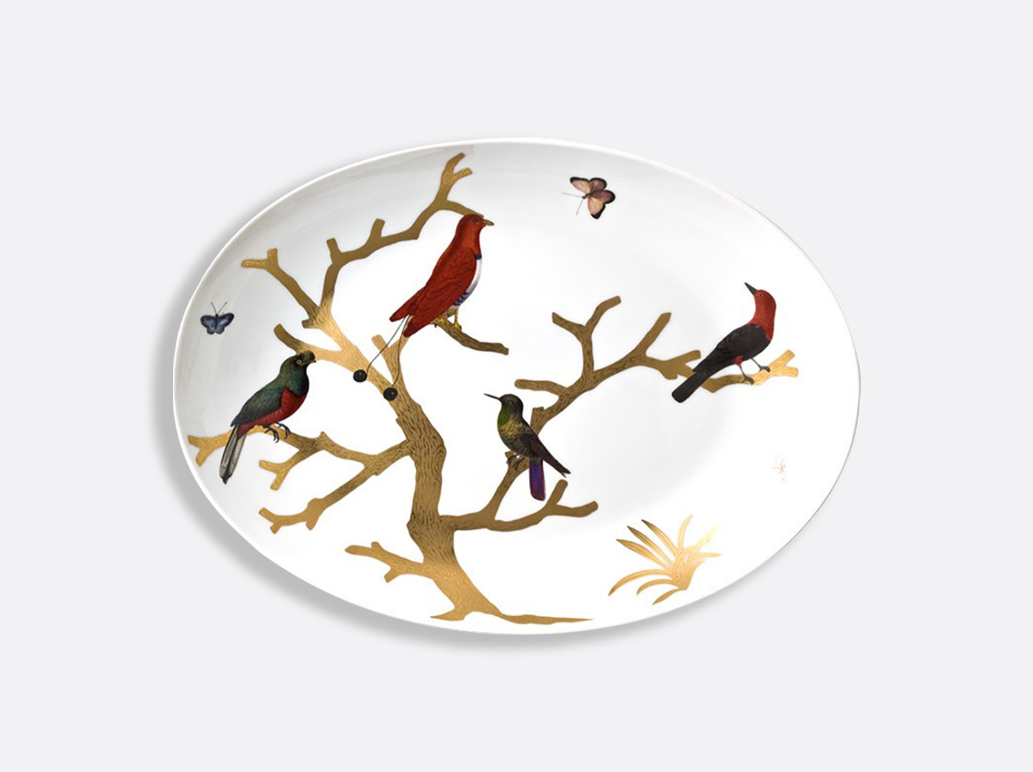 Plat ovale 39 x 28 cm en porcelaine de la collection Aux oiseaux Bernardaud