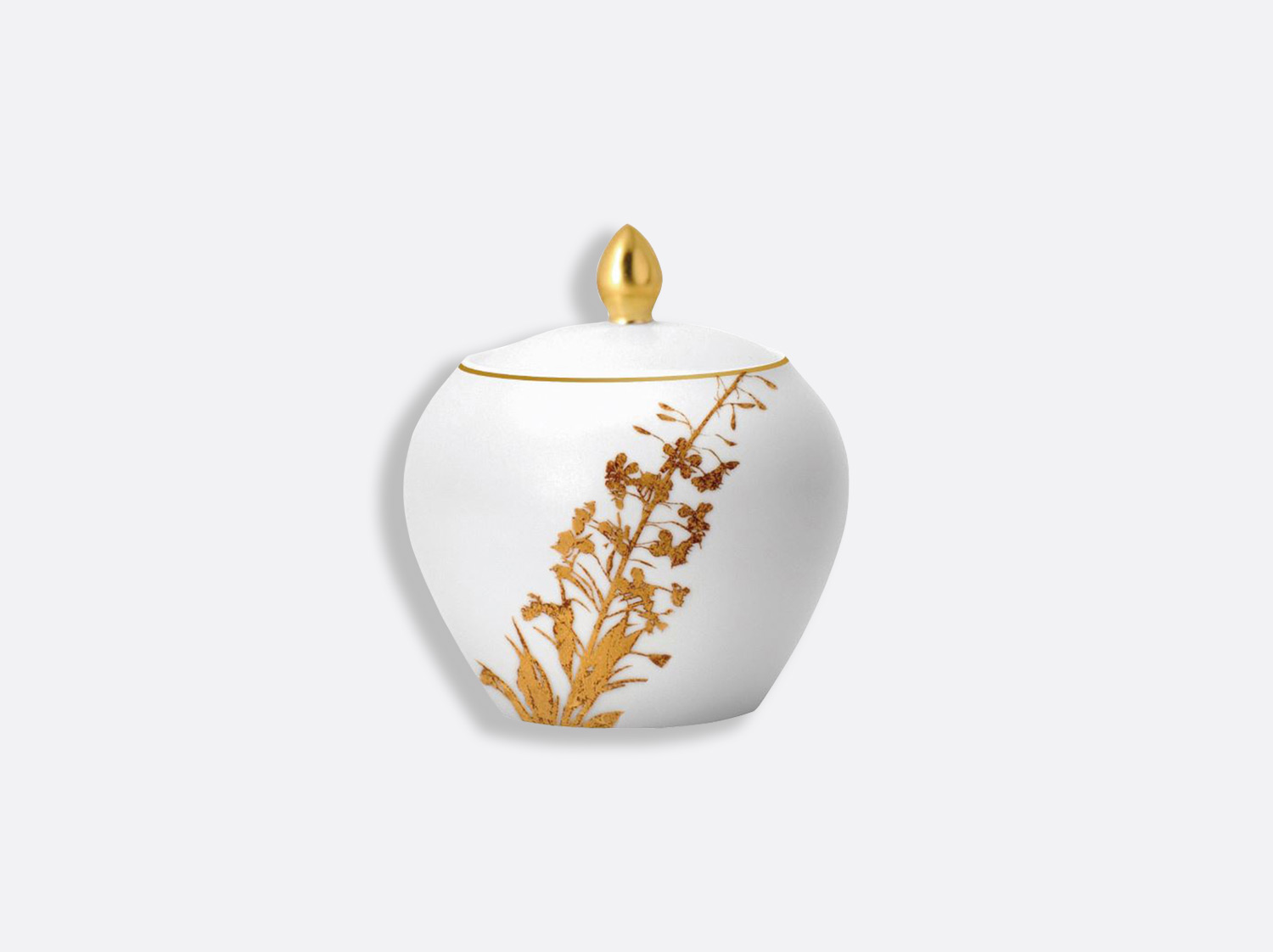 China Sucrier 12 tasses of the collection Vegetal gold | Bernardaud