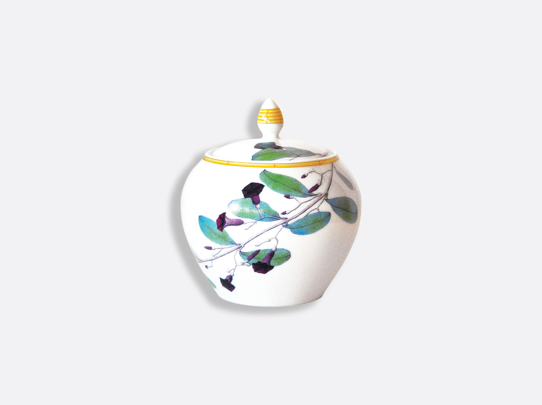 Sucrier 12 tasses 30 cl en porcelaine de la collection Jardin indien Bernardaud