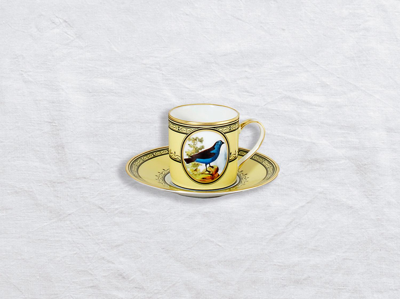 China Espresso cup and saucer 3 oz of the collection Tangara du bresil | Bernardaud