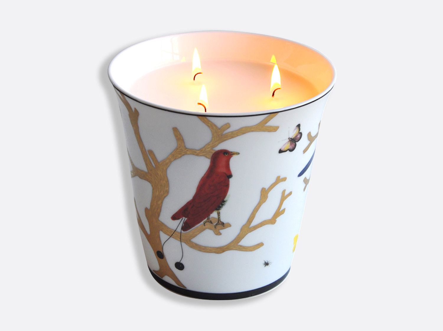 China Large candle tumbler H. 15 cm D. 15 cm of the collection Aux oiseaux | Bernardaud