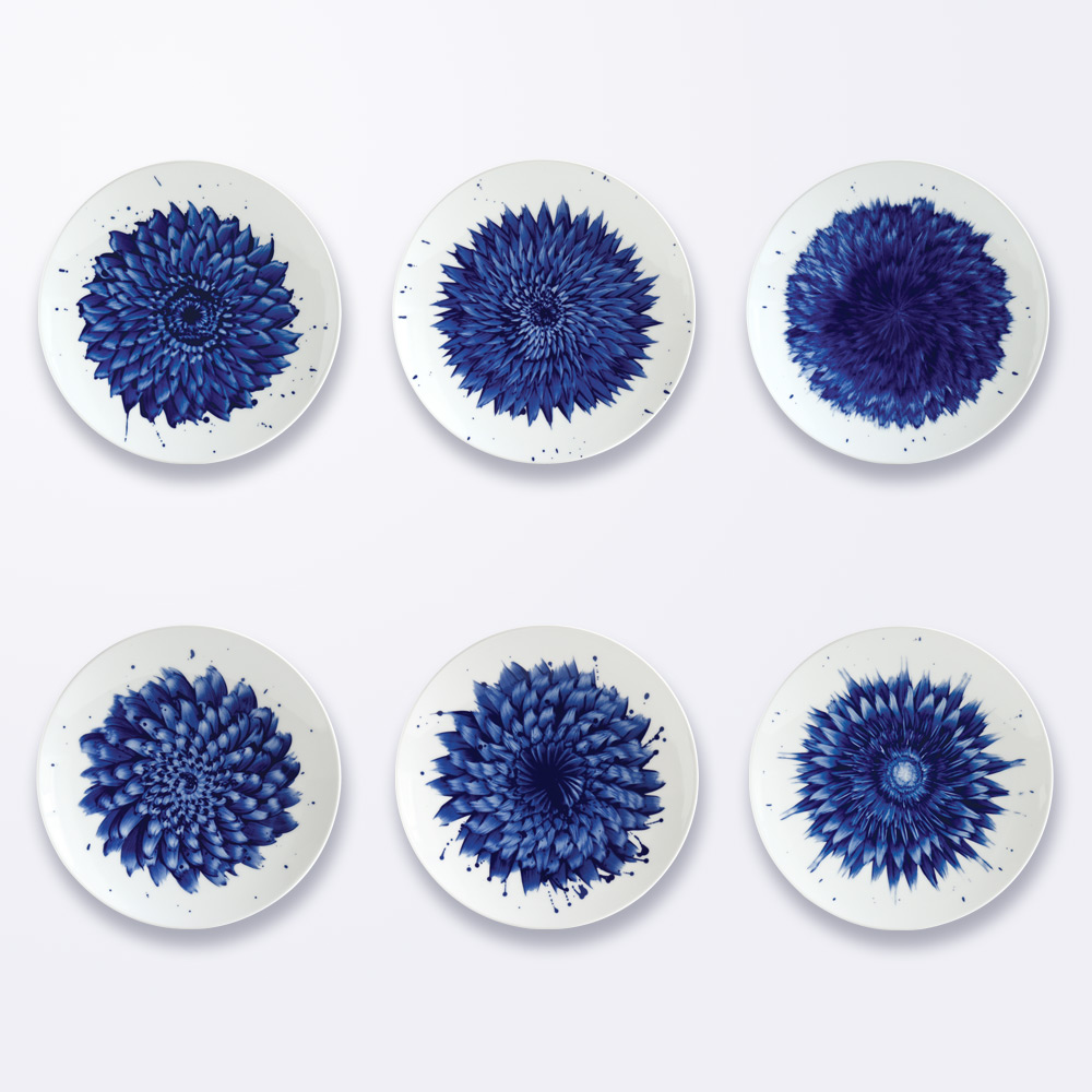 Coffret de 6 assiettes 21 cm assorties en porcelaine de la collection IN BLOOM - Zemer Peled Bernardaud