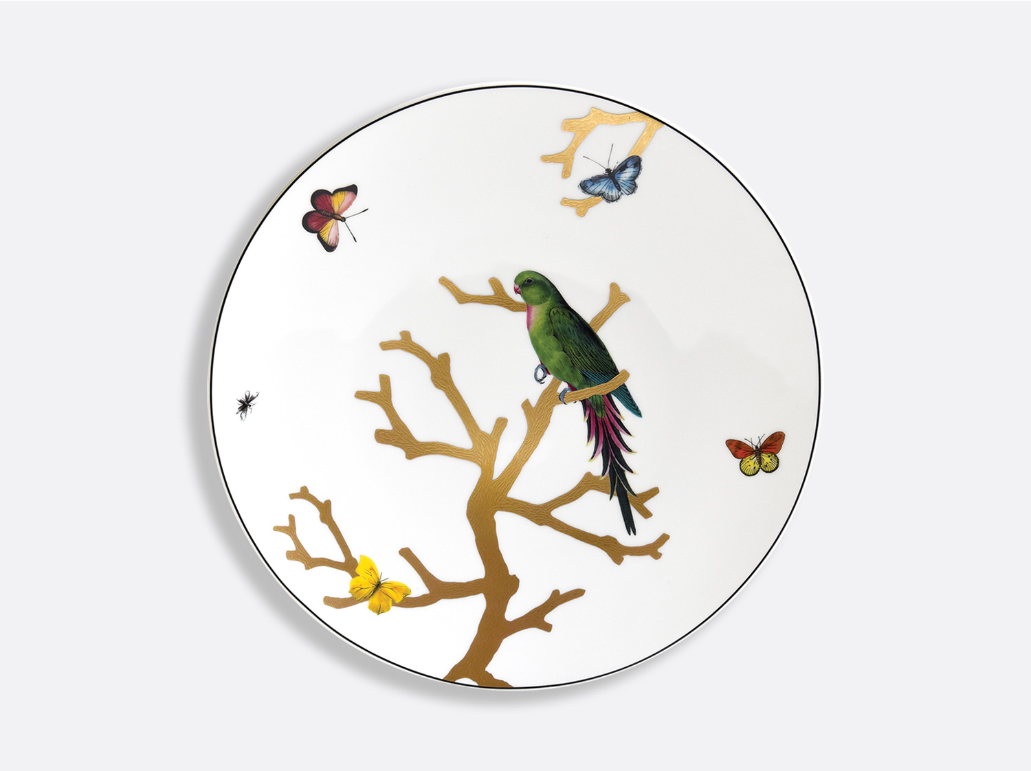 China Dinner plate 26 cm of the collection Aux Oiseaux Perruche vert | Bernardaud