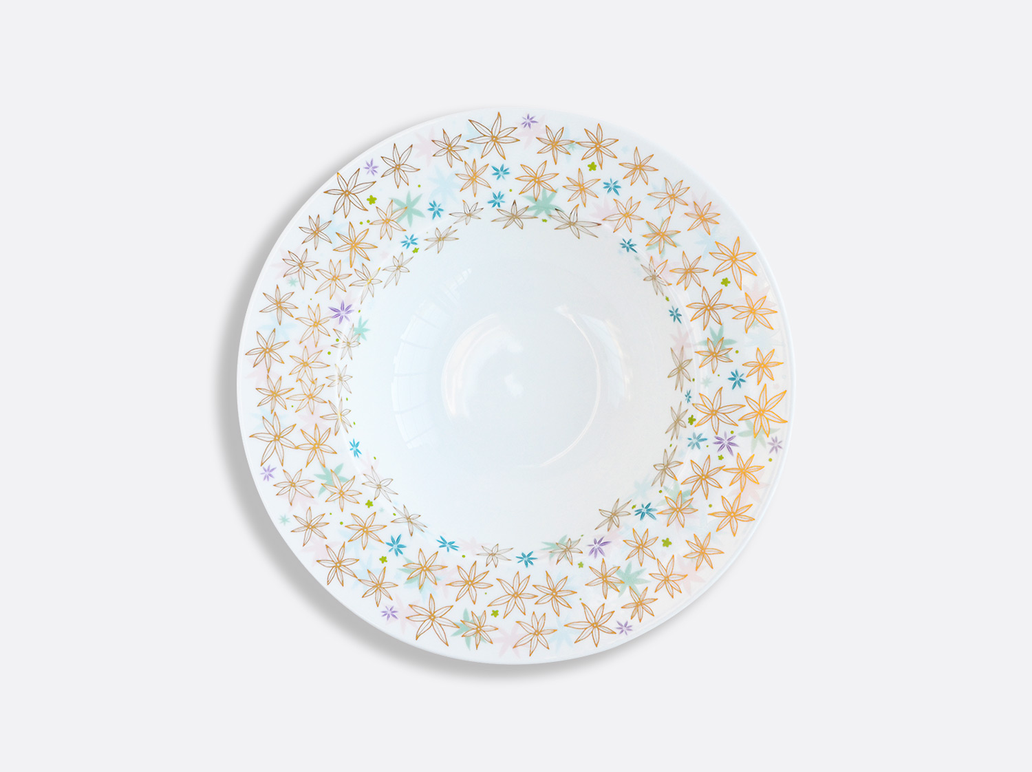 China Rim soup plate of the collection FÉERIE - MICHAËL CAILLOUX | Bernardaud